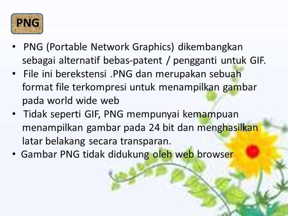 PNG (Portable Network Graphics) dikembangkan sebagai alternatif bebas-patent / pengganti untuk GIF. File ini berekstensi.PNG dan merupakan sebuah form