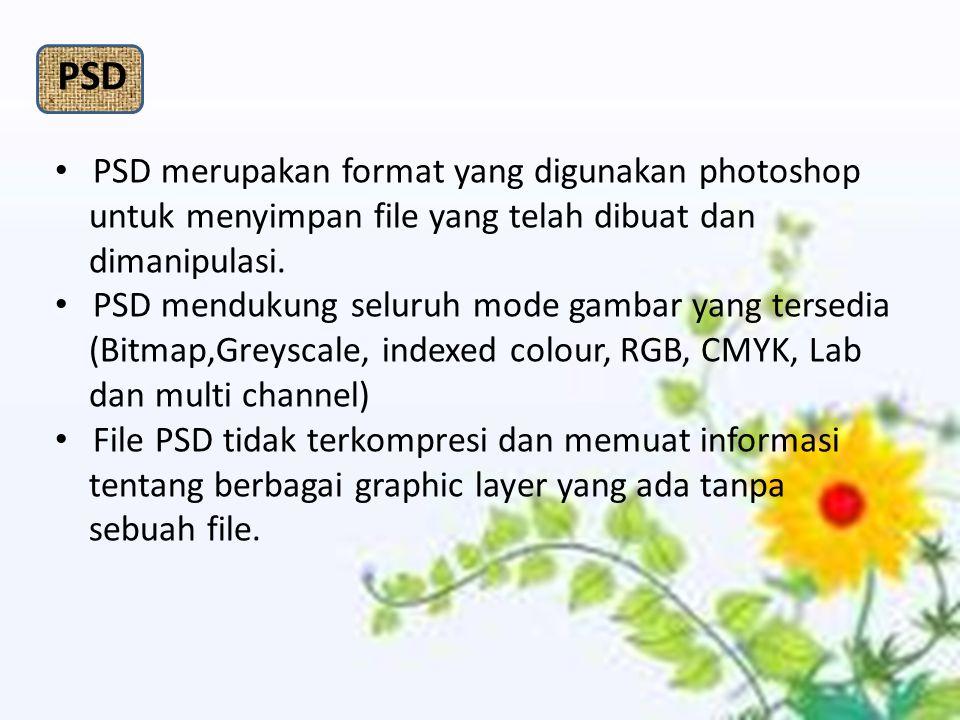 PSD merupakan format yang digunakan photoshop untuk menyimpan file yang telah dibuat dan dimanipulasi. PSD mendukung seluruh mode gambar yang tersedia