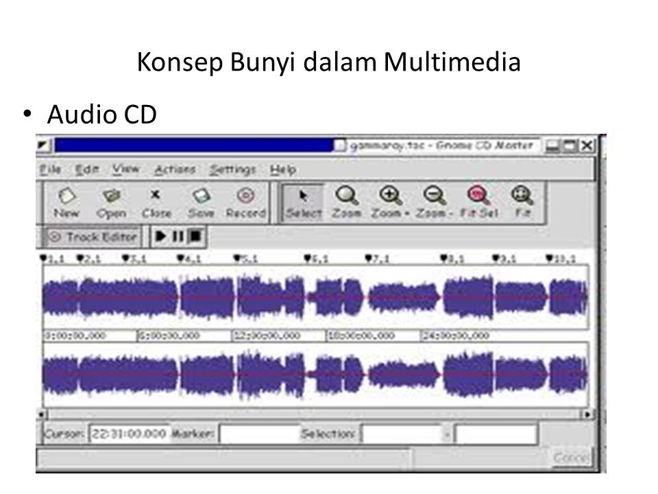 Konsep Bunyi dalam Multimedia Audio CD