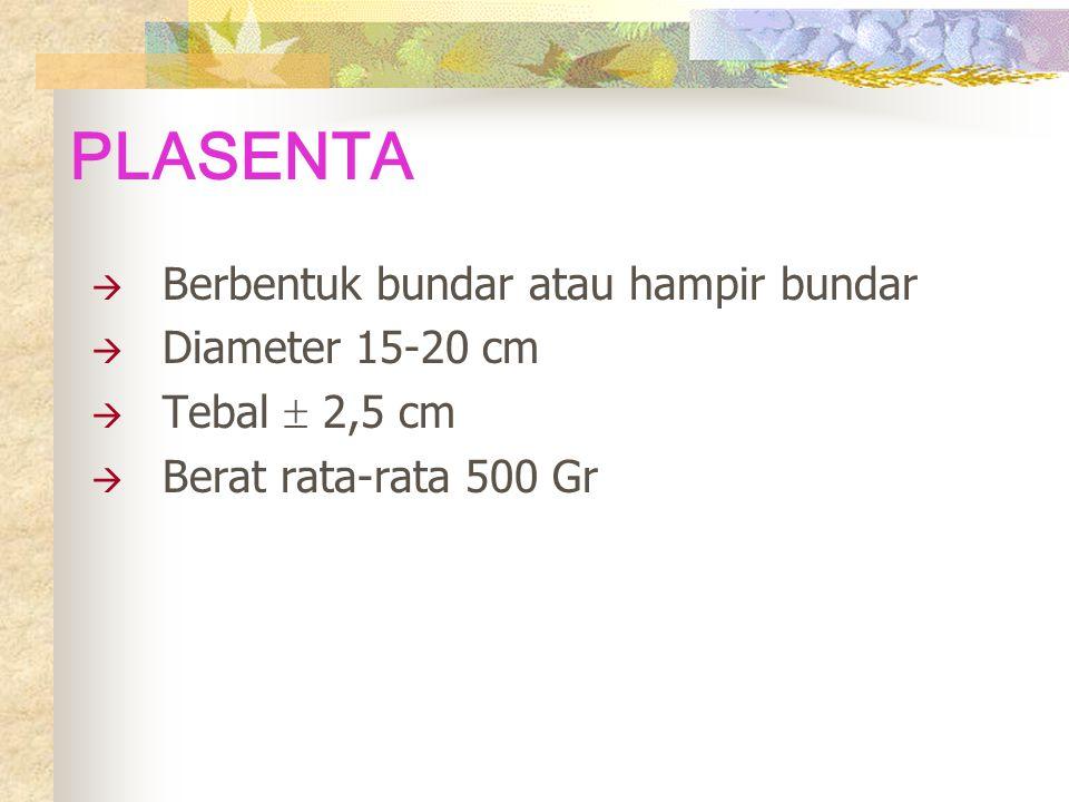 PLASENTA  Berbentuk bundar atau hampir bundar  Diameter 15-20 cm  Tebal  2,5 cm  Berat rata-rata 500 Gr