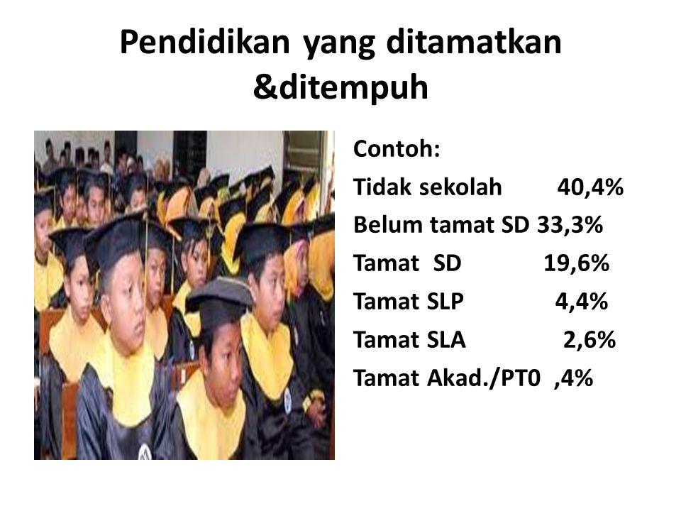 Pendidikan yang ditamatkan &ditempuh Contoh: Tidak sekolah40,4% Belum tamat SD 33,3% Tamat SD 19,6% Tamat SLP 4,4% Tamat SLA 2,6% Tamat Akad./PT0,4%