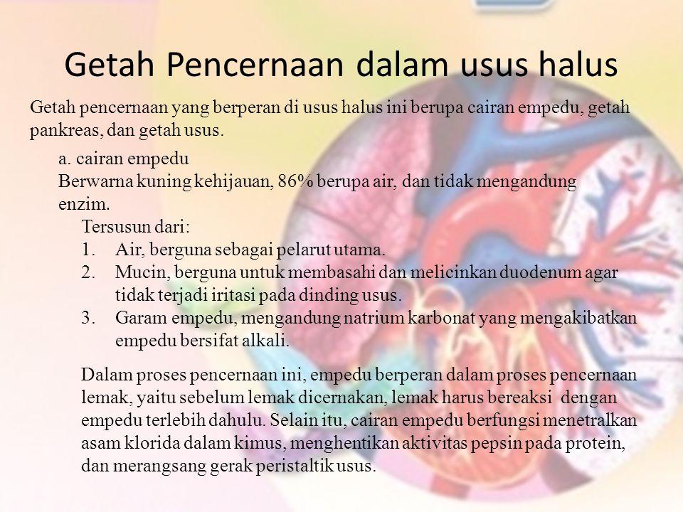 Getah Pencernaan dalam usus halus Getah pencernaan yang berperan di usus halus ini berupa cairan empedu, getah pankreas, dan getah usus. a. cairan emp