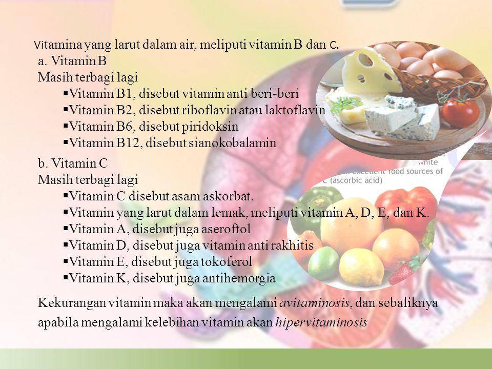 Garam mineral Garam mineral sama seperti vitamin, yaitu tidak mengalami proses pencernaan.