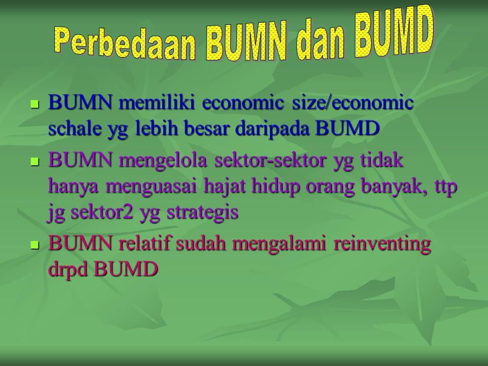 BUMN memiliki economic size/economic schale yg lebih besar daripada BUMD BUMN memiliki economic size/economic schale yg lebih besar daripada BUMD BUMN