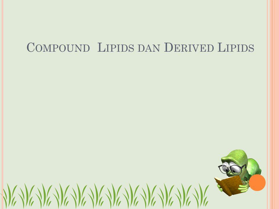 C OMPOUND L IPIDS DAN D ERIVED L IPIDS