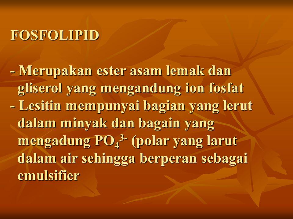 FOSFOLIPID - Merupakan ester asam lemak dan gliserol yang mengandung ion fosfat - Lesitin mempunyai bagian yang lerut dalam minyak dan bagain yang mengadung PO 4 3- (polar yang larut dalam air sehingga berperan sebagai emulsifier