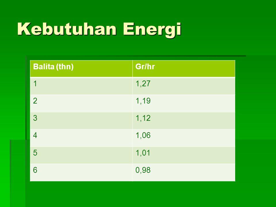Kebutuhan Energi  Kebutuhan energi ditentukan oleh metabolisme basal, umur, aktivitas fisik, suhu lingkungan, serta kesehatannya.