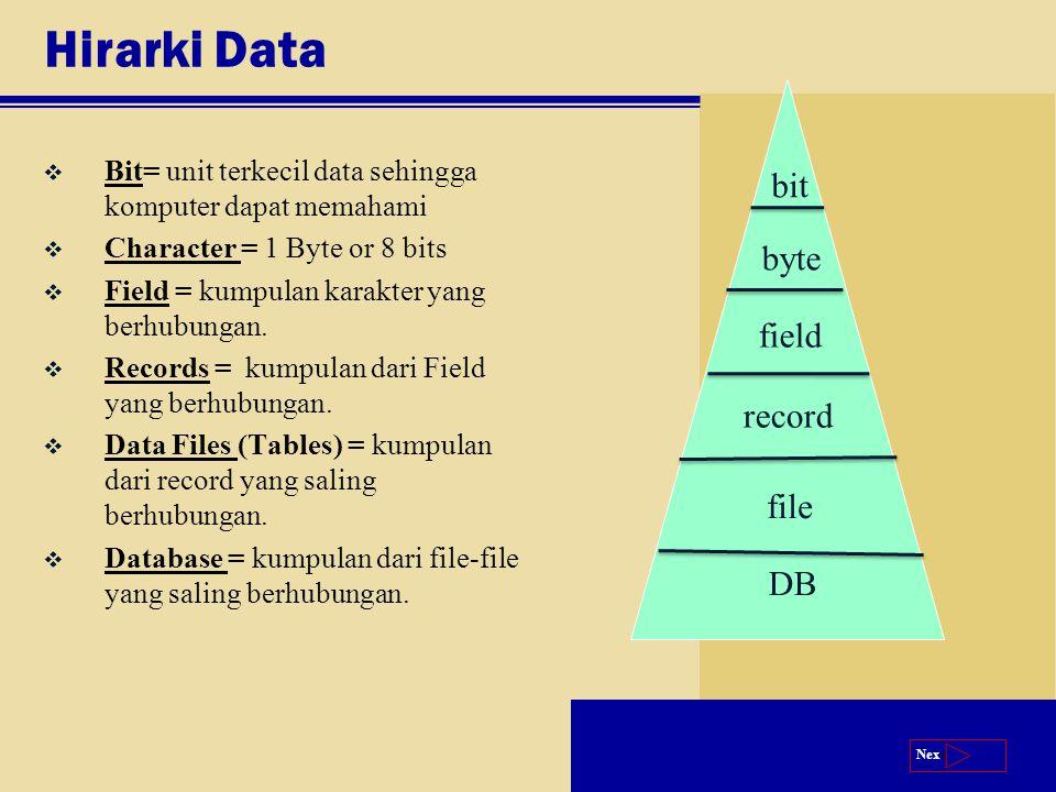 Next Hirarki Data v Bit= unit terkecil data sehingga komputer dapat memahami v Character = 1 Byte or 8 bits v Field = kumpulan karakter yang berhubungan.