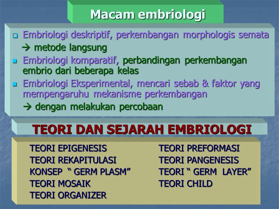 Macam embriologi  Embriologi deskriptif, perkembangan morphologis semata  metode langsung  metode langsung Embriologi komparatif, perbandingan perk