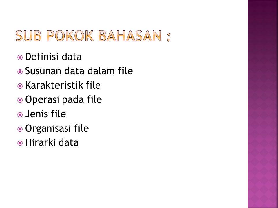  Definisi data  Susunan data dalam file  Karakteristik file  Operasi pada file  Jenis file  Organisasi file  Hirarki data