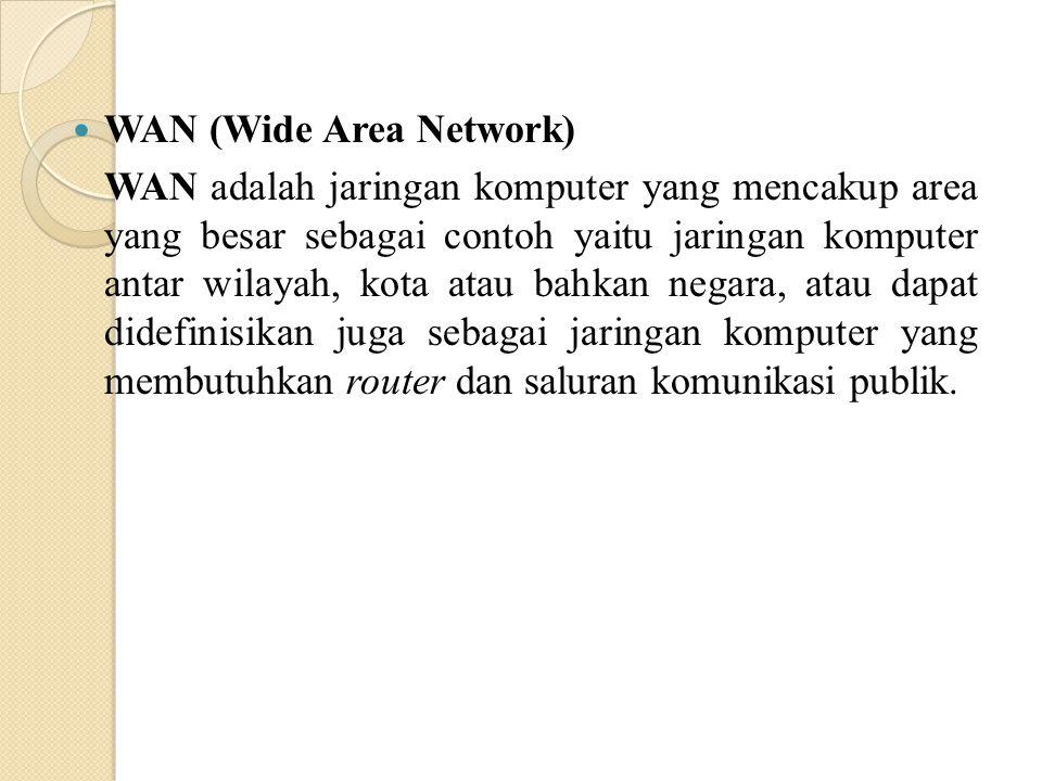 WAN (Wide Area Network) WAN adalah jaringan komputer yang mencakup area yang besar sebagai contoh yaitu jaringan komputer antar wilayah, kota atau bah