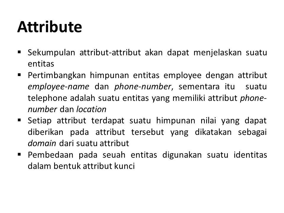 Attribute  Sekumpulan attribut-attribut akan dapat menjelaskan suatu entitas  Pertimbangkan himpunan entitas employee dengan attribut employee-name