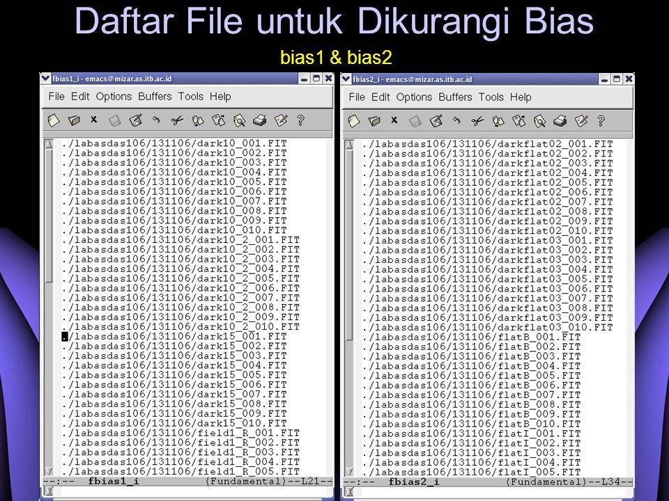 Daftar File untuk Dikurangi Bias bias1 & bias2