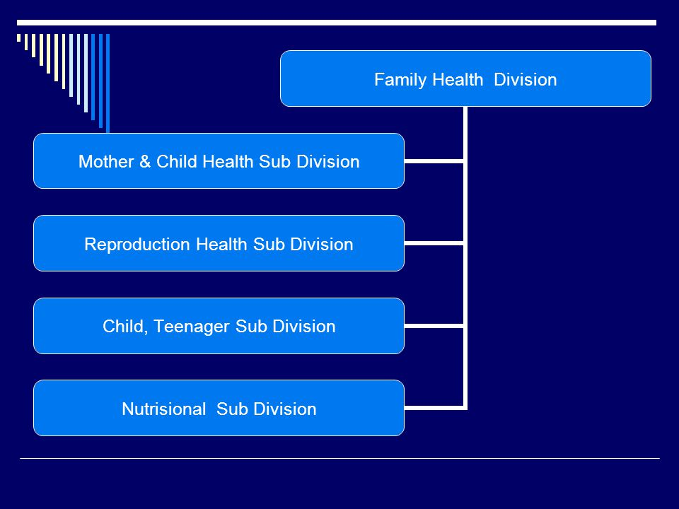 Family Health Division Mother & Child Health Sub Division Reproduction Health Sub Division Child, Teenager Sub Division Nutrisional Sub Division