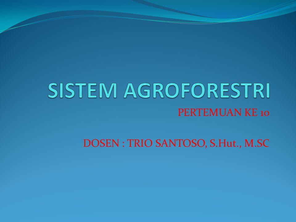 Beberapa model Agroforestry yang dapat dikembangkan : 1.