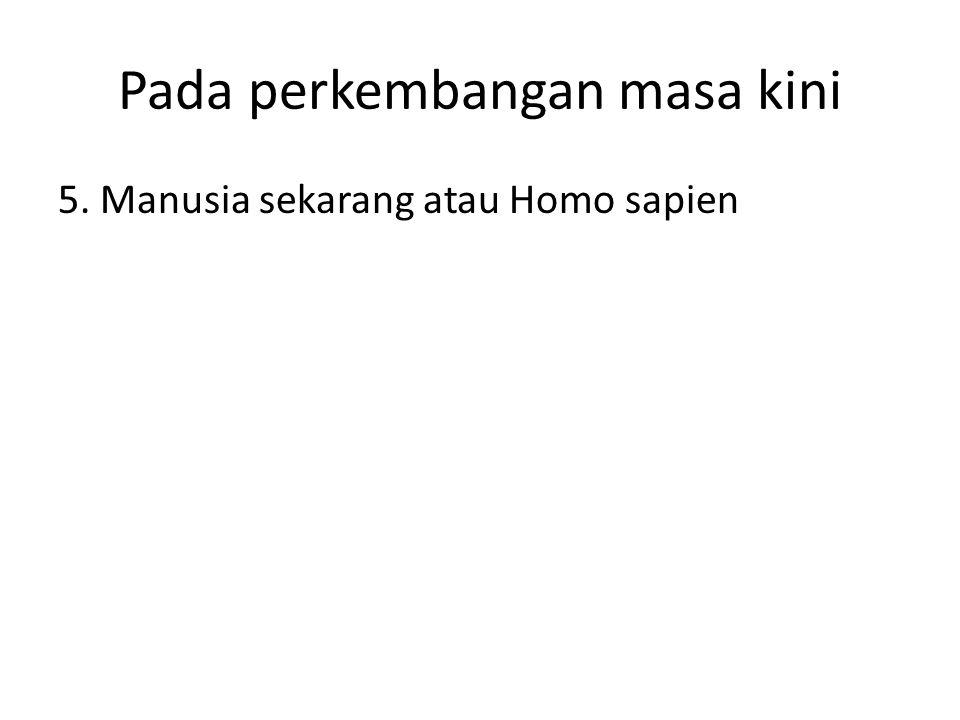 Pada perkembangan masa kini 5. Manusia sekarang atau Homo sapien