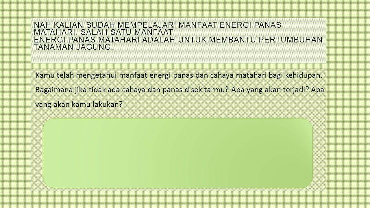 NAH KALIAN SUDAH MEMPELAJARI MANFAAT ENERGI PANAS MATAHARI. SALAH SATU MANFAAT ENERGI PANAS MATAHARI ADALAH UNTUK MEMBANTU PERTUMBUHAN TANAMAN JAGUNG.