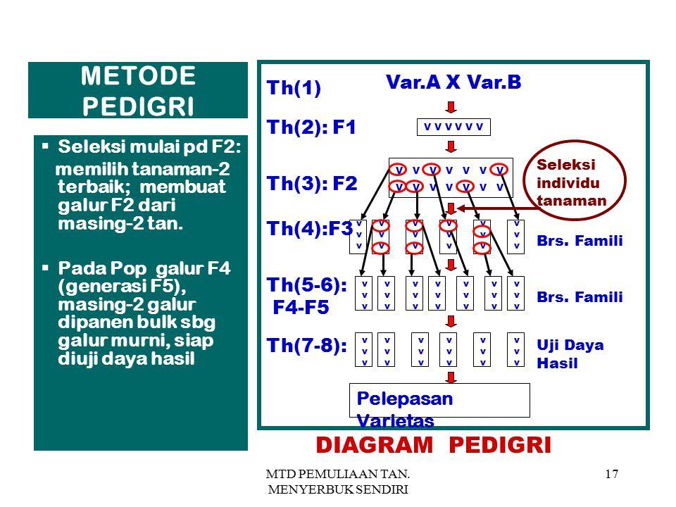 MTD PEMULIAAN TAN. MENYERBUK SENDIRI 17 METODE PEDIGRI  Seleksi mulai pd F2: memilih tanaman-2 terbaik; membuat galur F2 dari masing-2 tan.  Pada Po