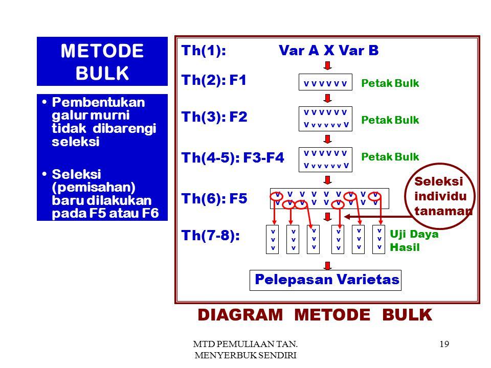 MTD PEMULIAAN TAN. MENYERBUK SENDIRI 19 Th(1): Var A X Var B Th(3): F2 Th(2): F1 V V V V v v v v v V V V V V V V V V V V V V V v v v v v V Th(6): F5 T