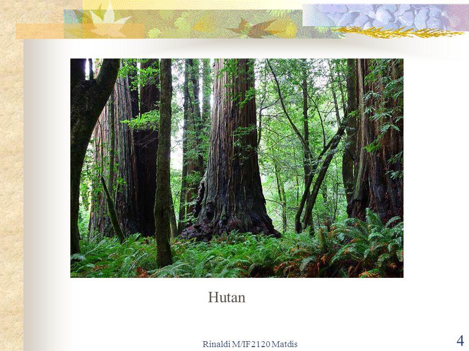 Rinaldi M/IF2120 Matdis 5 Sifat-sifat (properti) pohon