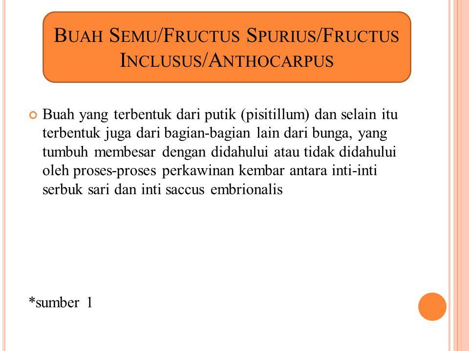 1.Penduculus (tangkai bunga) 2.