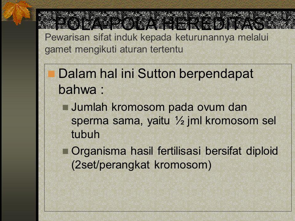 POLA-POLA HEREDITAS Dalam hal ini Sutton berpendapat bahwa : Jumlah kromosom pada ovum dan sperma sama, yaitu ½ jml kromosom sel tubuh Organisma hasil