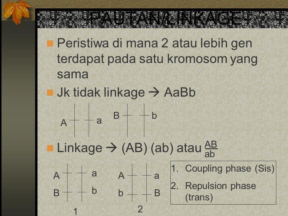 PAUTAN/LINKAGE Peristiwa di mana 2 atau lebih gen terdapat pada satu kromosom yang sama Jk tidak linkage  AaBb Linkage  (AB) (ab) atau — AB ab A a B