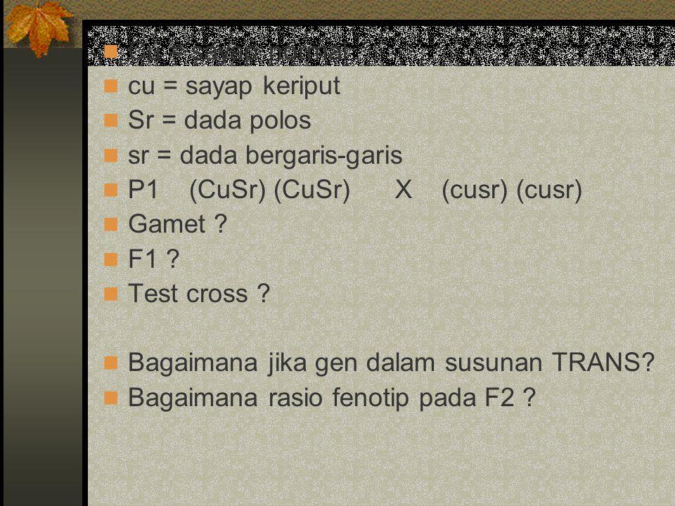 Cu = sayap normal cu = sayap keriput Sr = dada polos sr = dada bergaris-garis P1 (CuSr) (CuSr) X (cusr) (cusr) Gamet ? F1 ? Test cross ? Bagaimana jik