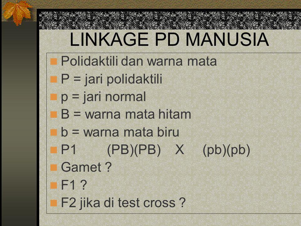 LINKAGE PD MANUSIA Polidaktili dan warna mata P = jari polidaktili p = jari normal B = warna mata hitam b = warna mata biru P1 (PB)(PB) X (pb)(pb) Gam