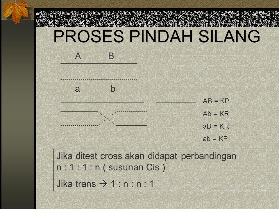 PROSES PINDAH SILANG A B a b AB = KP Ab = KR aB = KR ab = KP Jika ditest cross akan didapat perbandingan n : 1 : 1 : n ( susunan Cis ) Jika trans  1