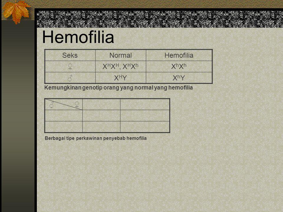 Hemofilia SeksNormalHemofilia ♀X H X H, X H X h XhXhXhXh ♂XHYXHYXhYXhY Kemungkinan genotip orang yang normal yang hemofilia ♂ ♀ Berbagai tipe perkawin