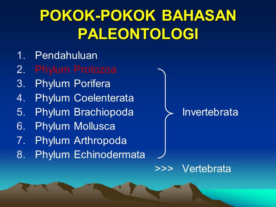 POKOK-POKOK BAHASAN PALEONTOLOGI 1.Pendahuluan 2.Phylum Protozoa 3.Phylum Porifera 4.Phylum Coelenterata 5.Phylum BrachiopodaInvertebrata 6.Phylum Mol