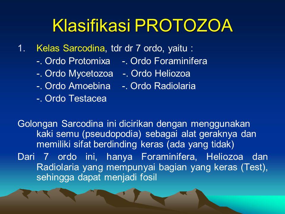Klasifikasi PROTOZOA 1.Kelas Sarcodina, tdr dr 7 ordo, yaitu : -. Ordo Protomixa -. Ordo Foraminifera -. Ordo Mycetozoa -. Ordo Heliozoa -. Ordo Amoeb