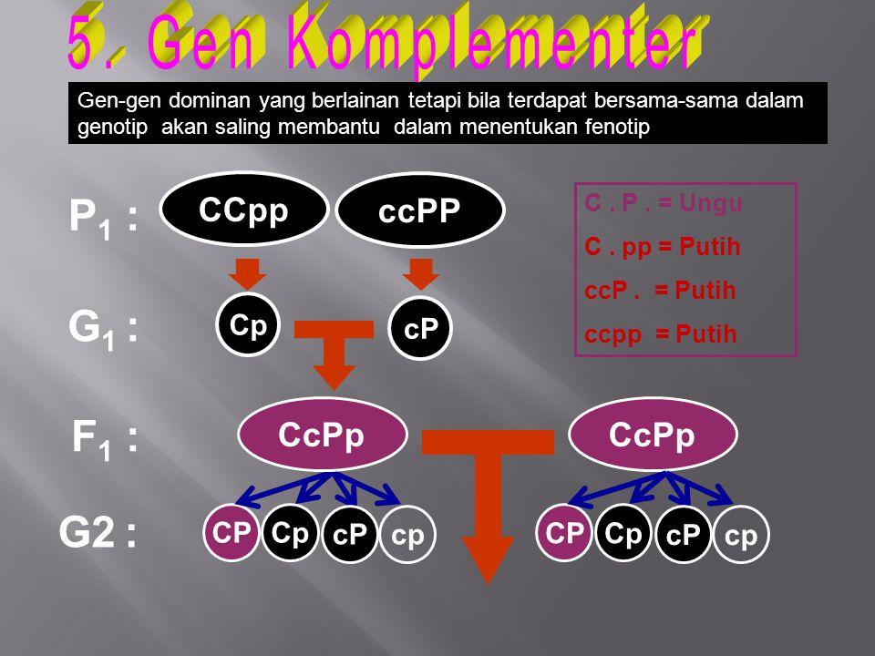 P 1 : G 1 : F 1 : Cp CPCp G2 : C. P. = Ungu C. pp = Putih ccP. = Putih ccpp = Putih CcPp CCpp ccPP cP cp CPCp cPcp Gen-gen dominan yang berlainan teta