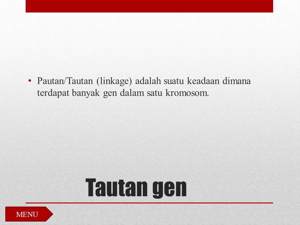 Tautan gen Pautan/Tautan (linkage) adalah suatu keadaan dimana terdapat banyak gen dalam satu kromosom. MENU