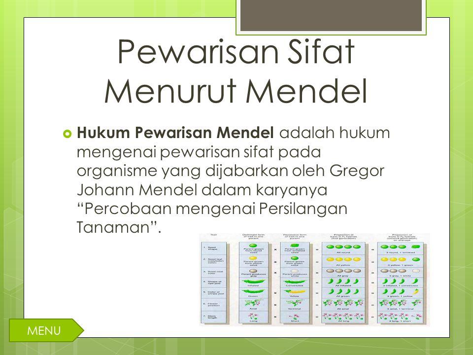 Pewarisan Sifat Menurut Mendel  Hukum Pewarisan Mendel adalah hukum mengenai pewarisan sifat pada organisme yang dijabarkan oleh Gregor Johann Mendel