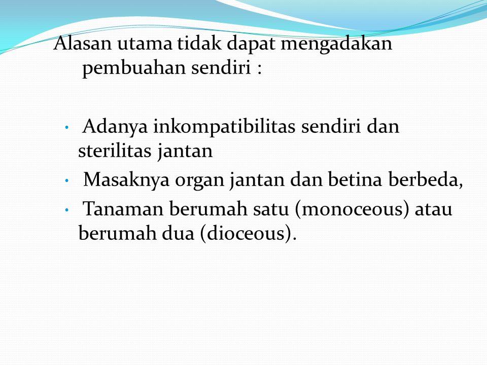 Alasan utama tidak dapat mengadakan pembuahan sendiri : Adanya inkompatibilitas sendiri dan sterilitas jantan Masaknya organ jantan dan betina berbeda, Tanaman berumah satu (monoceous) atau berumah dua (dioceous).