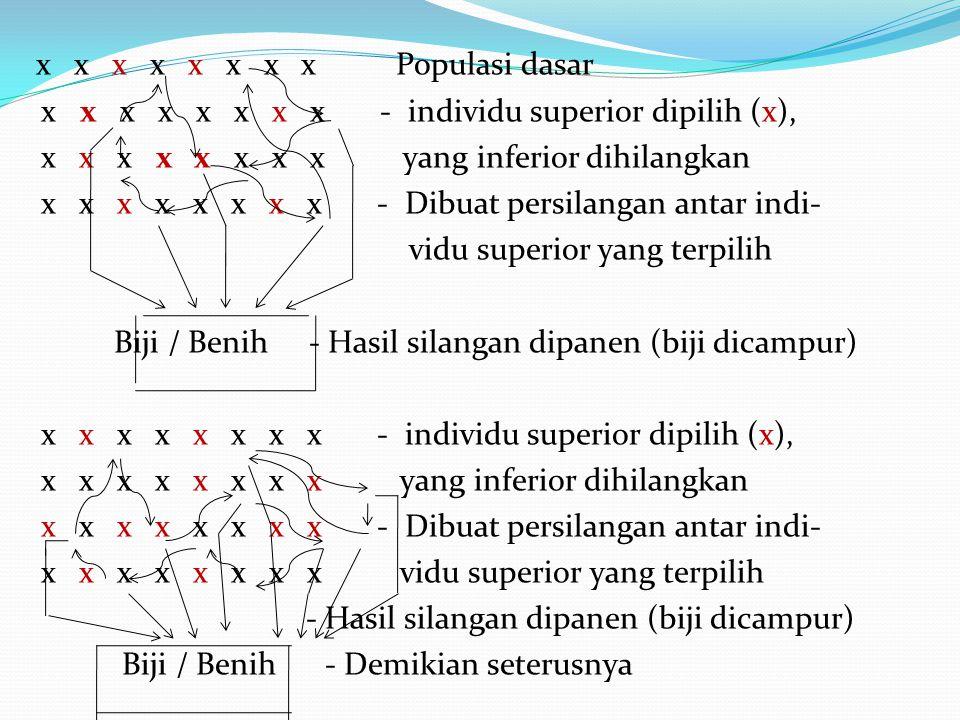 x x x x x x x x Populasi dasar x x x x x x x x - individu superior dipilih (x), x x x x x x x x yang inferior dihilangkan x x x x x x x x - Dibuat persilangan antar indi- vidu superior yang terpilih Biji / Benih - Hasil silangan dipanen (biji dicampur) x x x x x x x x - individu superior dipilih (x), x x x x x x x x yang inferior dihilangkan x x x x x x x x - Dibuat persilangan antar indi- x x x x x x x x vidu superior yang terpilih - Hasil silangan dipanen (biji dicampur) Biji / Benih - Demikian seterusnya