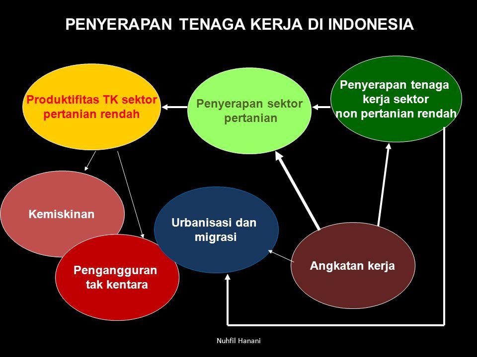 Nuhfil Hanani PENYERAPAN TENAGA KERJA DI INDONESIA Produktifitas TK sektor pertanian rendah Penyerapan sektor pertanian Angkatan kerja Kemiskinan Peng