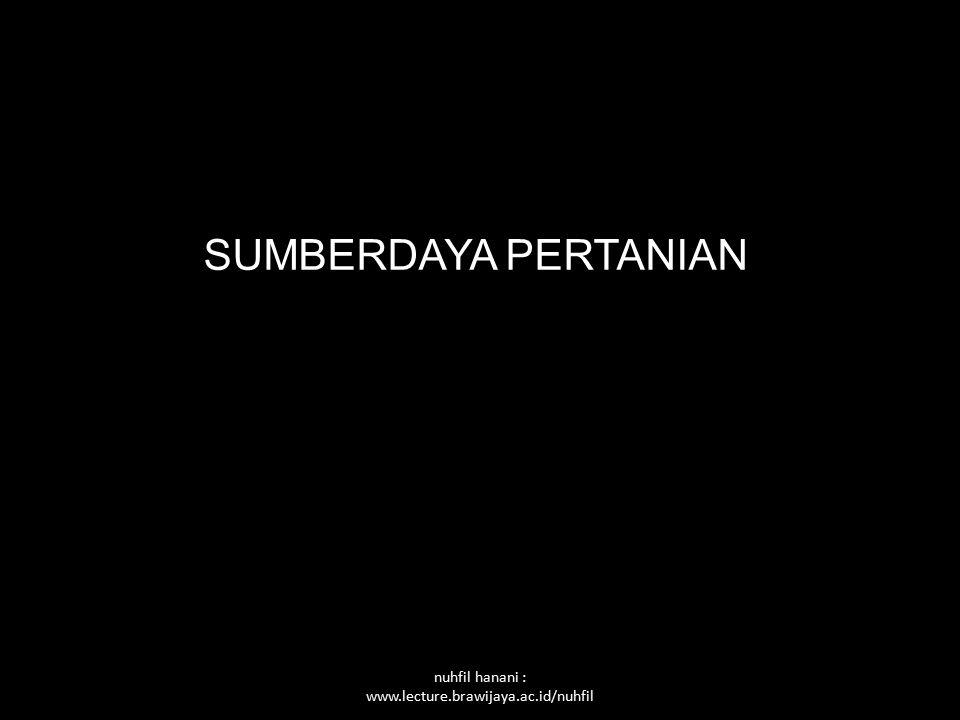 Nuhfil Hanani PENYERAPAN TENAGA KERJA DI INDONESIA Produktifitas TK sektor pertanian rendah Penyerapan sektor pertanian Angkatan kerja Kemiskinan Pengangguran tak kentara Urbanisasi dan migrasi Penyerapan tenaga kerja sektor non pertanian rendah