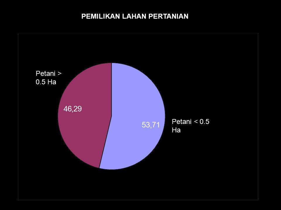 Petani < 0.5 Ha Petani > 0.5 Ha PEMILIKAN LAHAN PERTANIAN