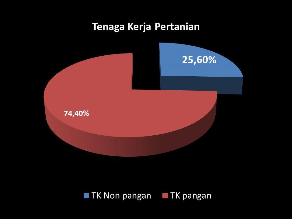 Sumber : Diolah dari FAO Statistical Yearbook, 2010 NEGARA PRODUSEN PANGAN 7