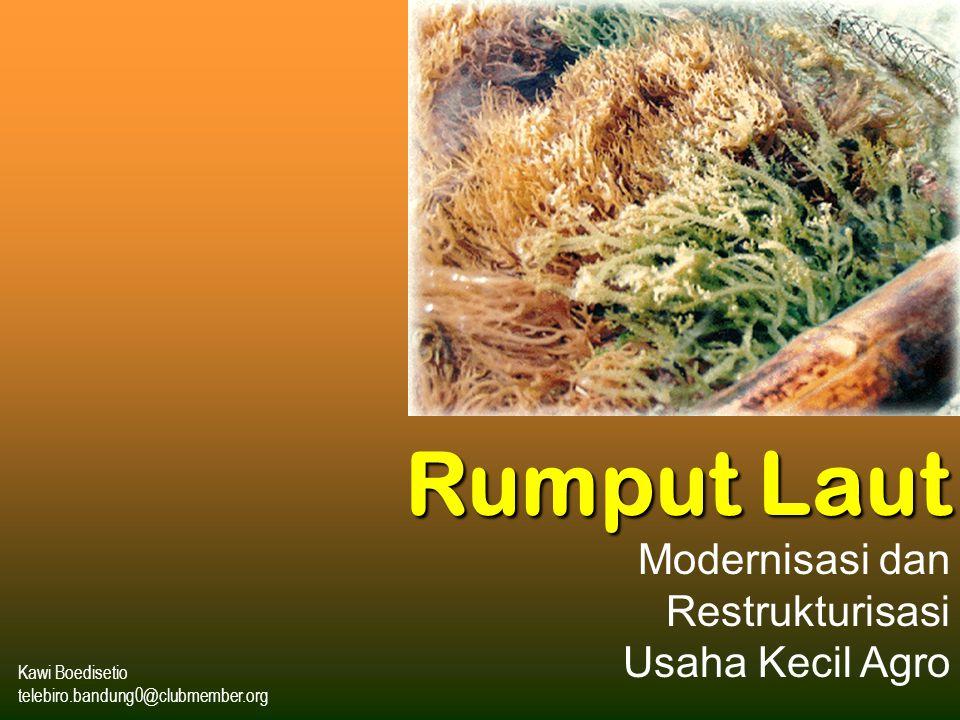 Kawi Boedisetio telebiro.bandung0@clubmember.org Rumput Laut Modernisasi dan Restrukturisasi Usaha Kecil Agro