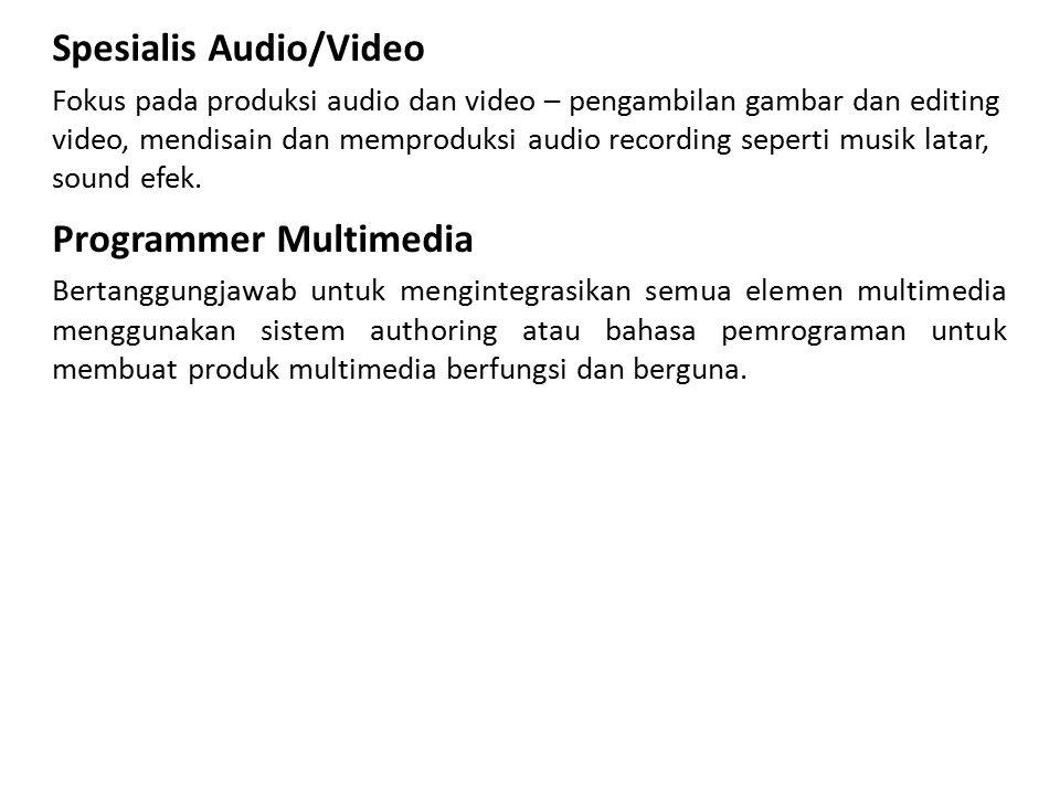 Spesialis Audio/Video Fokus pada produksi audio dan video – pengambilan gambar dan editing video, mendisain dan memproduksi audio recording seperti mu