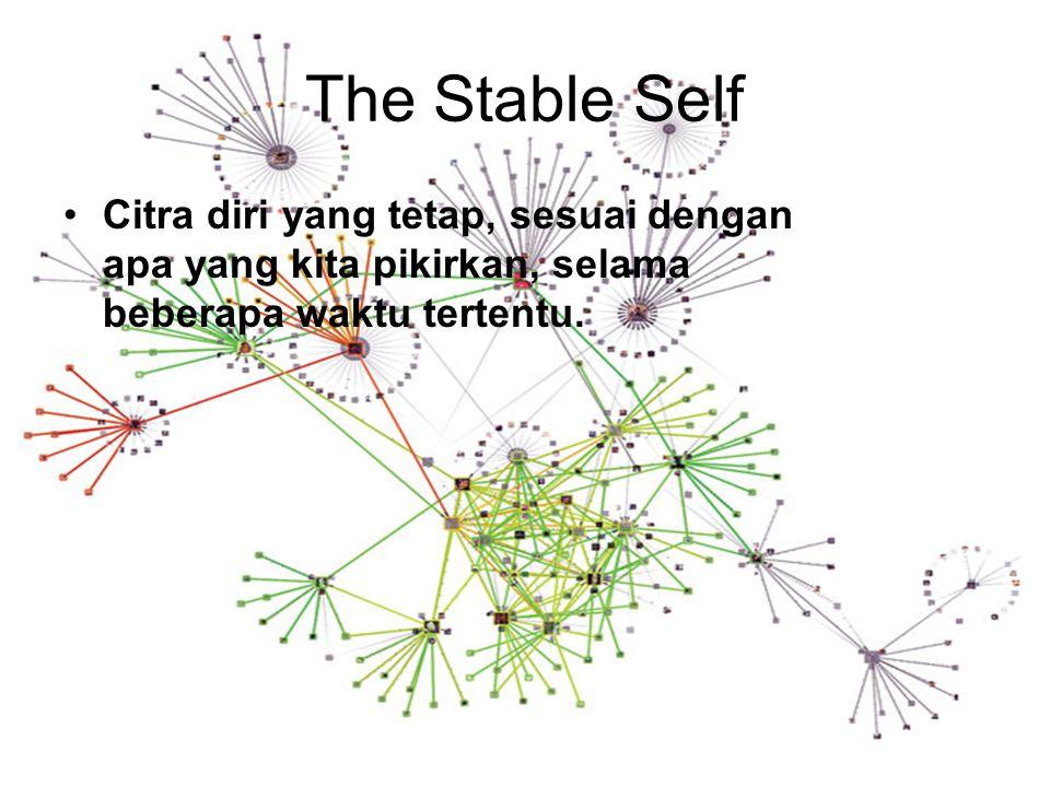 The Stable Self Citra diri yang tetap, sesuai dengan apa yang kita pikirkan, selama beberapa waktu tertentu.