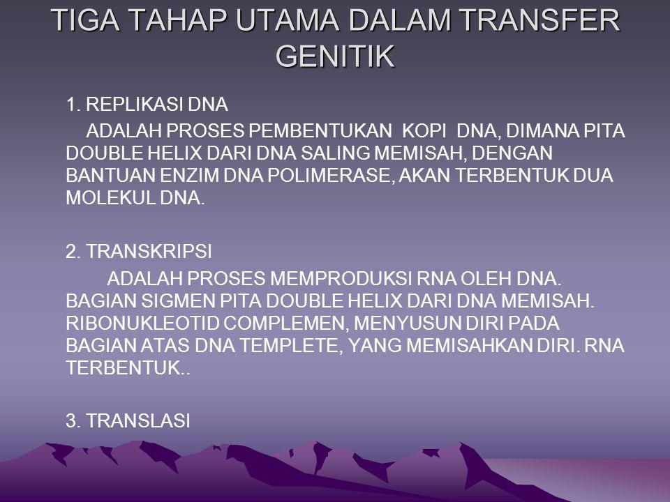 TIGA TAHAP UTAMA DALAM TRANSFER GENITIK 1.