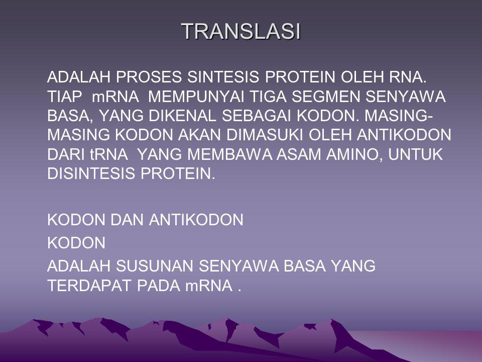 TRANSLASI ADALAH PROSES SINTESIS PROTEIN OLEH RNA.