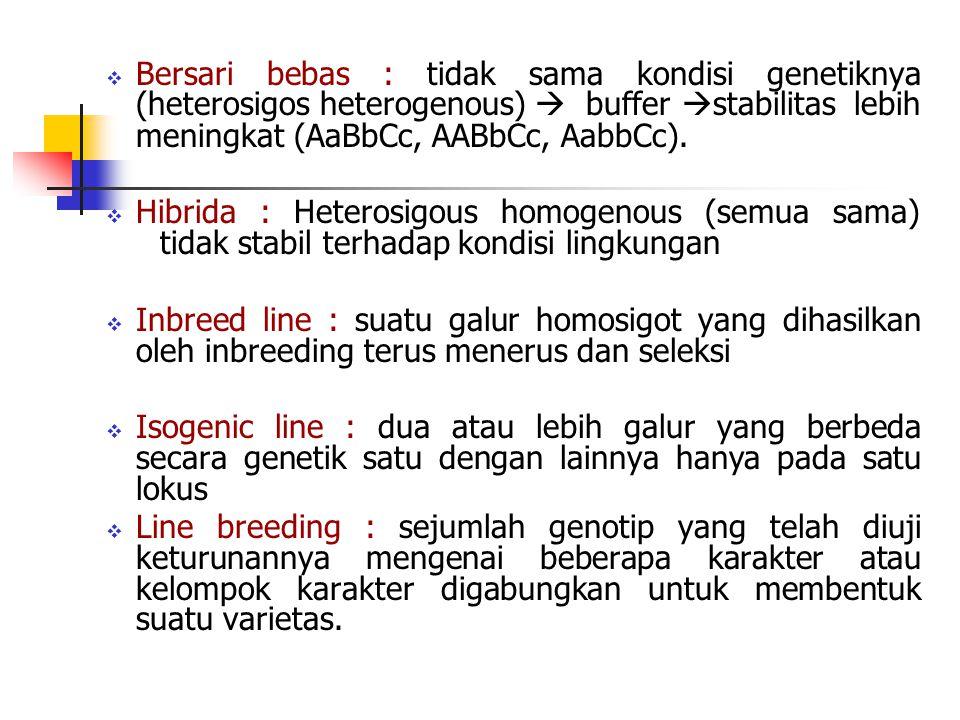  Bersari bebas : tidak sama kondisi genetiknya (heterosigos heterogenous)  buffer  stabilitas lebih meningkat (AaBbCc, AABbCc, AabbCc).  Hibrida :