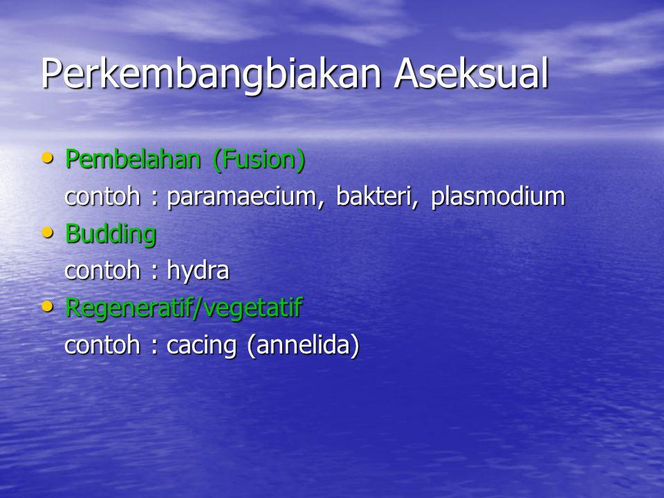 Perkembangbiakan Aseksual Pembelahan (Fusion) Pembelahan (Fusion) contoh : paramaecium, bakteri, plasmodium contoh : paramaecium, bakteri, plasmodium