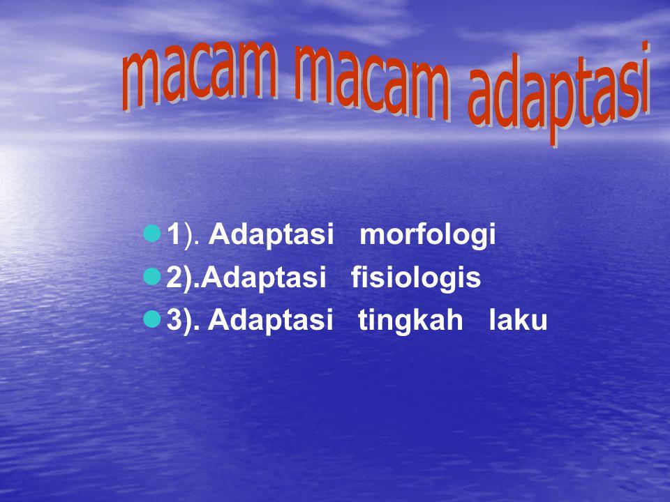 1). Adaptasi morfologi 2).Adaptasi fisiologis 3). Adaptasi tingkah laku